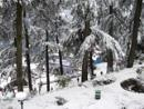 Exclusive Himachal Pradesh Tour Packages, Hotels in Himachal, 9 Nights Domestic Package Tour, India.