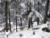 Domestic tour packages, hotel booking, Exclusive Himachal 09 nights